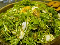 salada051129