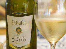 Wine_schales