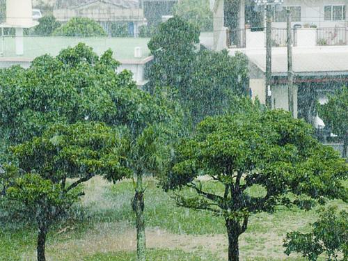 060610_11park_rain