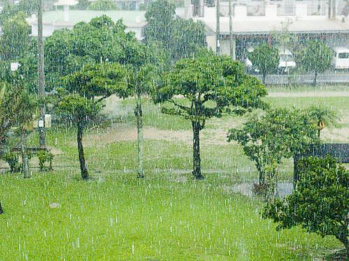 060610_11park_zen_rain